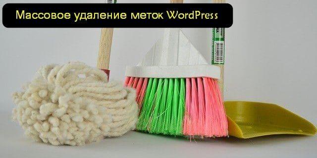 удаление меток Wordpress