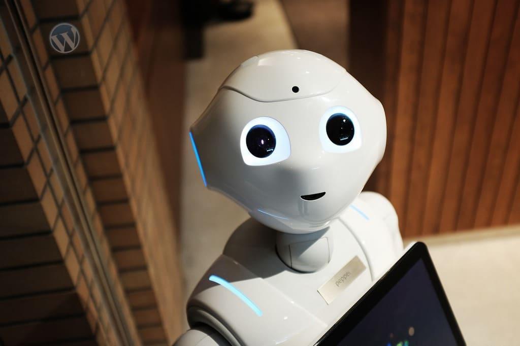закрыть сайт WordPress от индексации в robots.txt