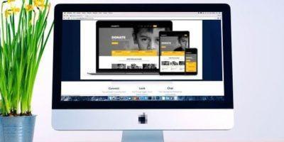 Бесплатные и платные темы WordPress