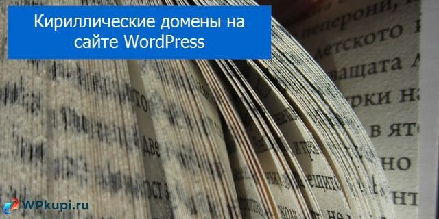Кириллические домены на WordPress